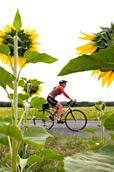 Why-choice-biking